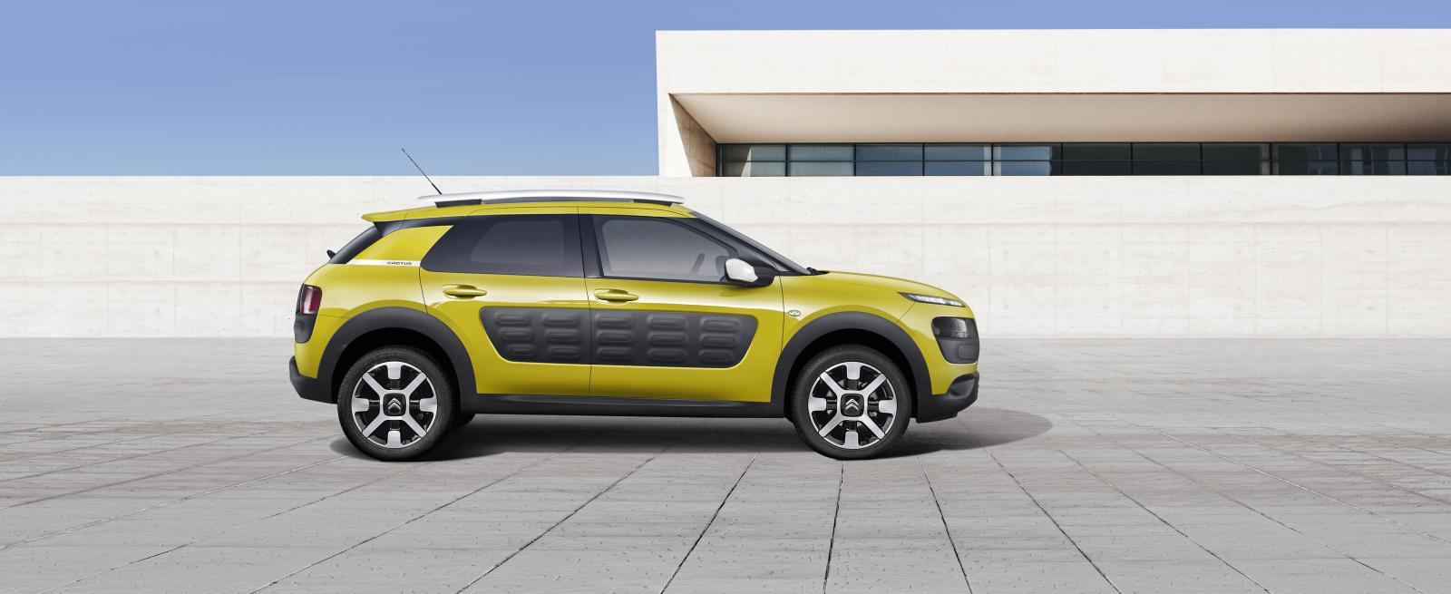 C4 Cactus Feel edition 2014 vue latérale grand angle